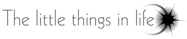 LittleThings Logo