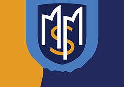 MSM Advisors - Virtual CFO and Accounting Logo