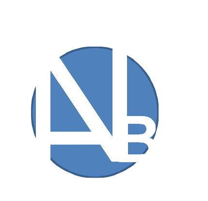 NAB Professional Services Logo
