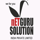 Netgurusolution India Pvt. Ltd. Logo