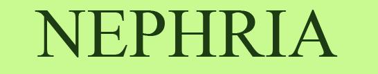 NEPHRIA Logo