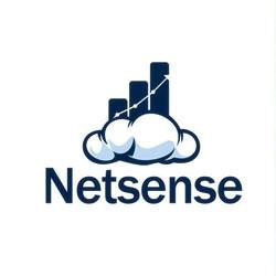 Netsense Business Solutions Logo
