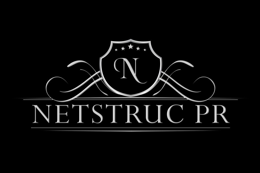 NetstrucPR Logo