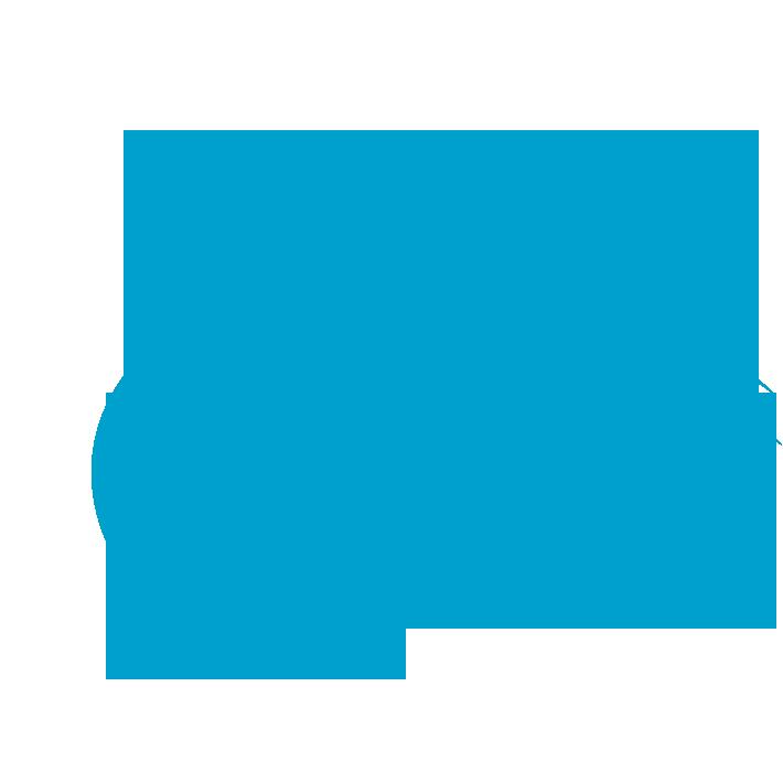 OLSET Inc Logo