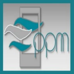 PPM_Services Logo
