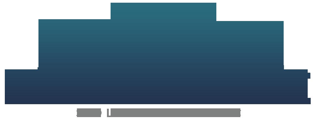 Pacific Empire Solutions Inc Logo