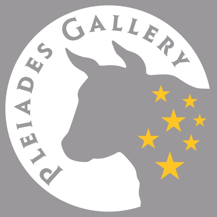 Pleiades Gallery Logo