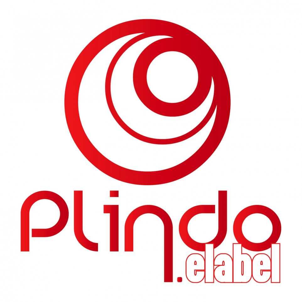 Plindo eLabel Logo