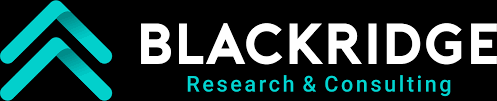 Business Research and Consulting Logo