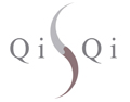 QiSQi Secure Documents and Biometrics Logo