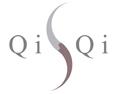 QiSQi Secure Documents and Biometrics Logo