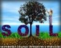 SOIL_Haiti Logo