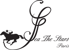 Sea The Stars Store Logo