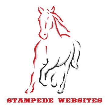 StampedeWebsites Logo