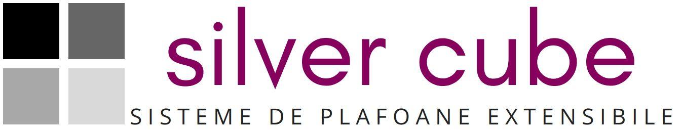 Silver Cube LTD Logo