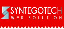 Syntegotech Web Solution Logo