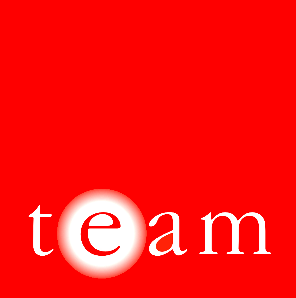 TEAM (Energy Auditing Agency Ltd.) Logo