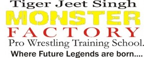 TJSMFW Wrestling Training School Logo