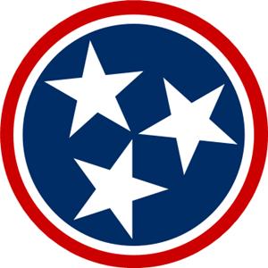 TNAcupunctureCouncil Logo
