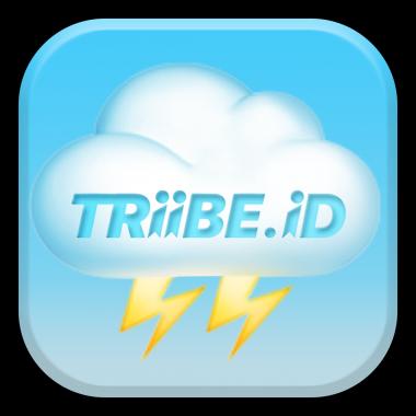 TRiiBE Networks, LTD Logo