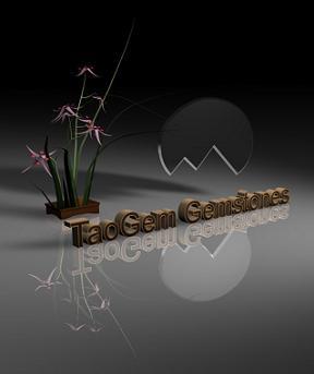 TaoGem Gemstones Logo