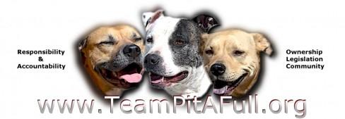 Team Pit-a-Full Dog Training and Rehabilitation Logo
