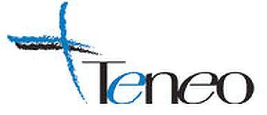 Teneo Logo