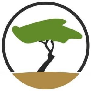 TenereSystems Logo