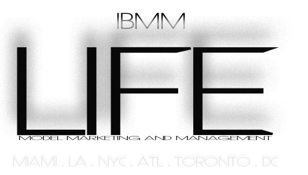 Ice Box Management & Marketing Logo