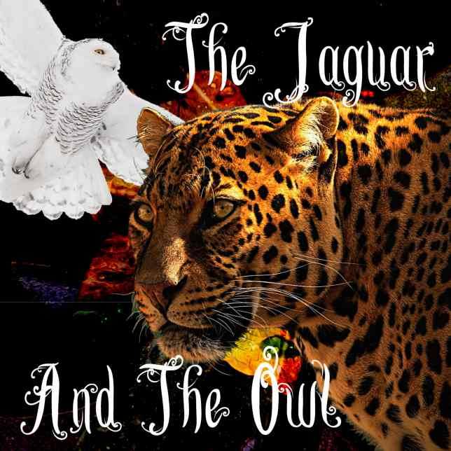 The Jaguar And The Owl Logo