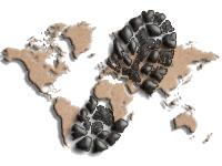 Trekking the Planet Logo