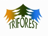 TriForest Logo
