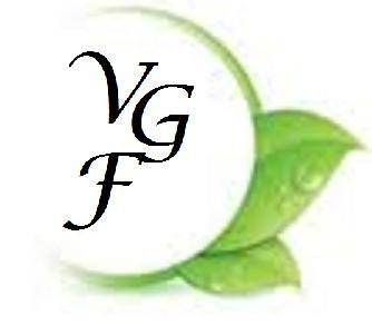 VGFoundation Logo