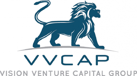 Vision Venture Capital Group Logo