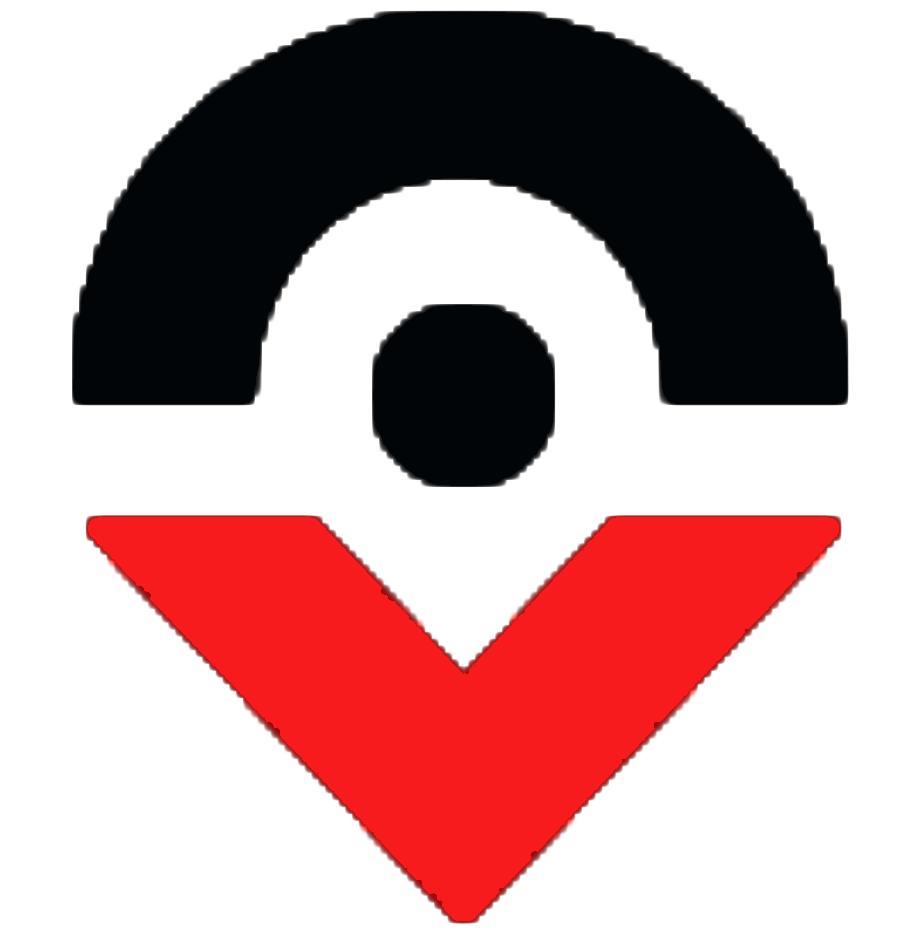 ValeoStrategyGroup Logo