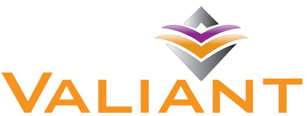Valiant Design and Marketing Logo