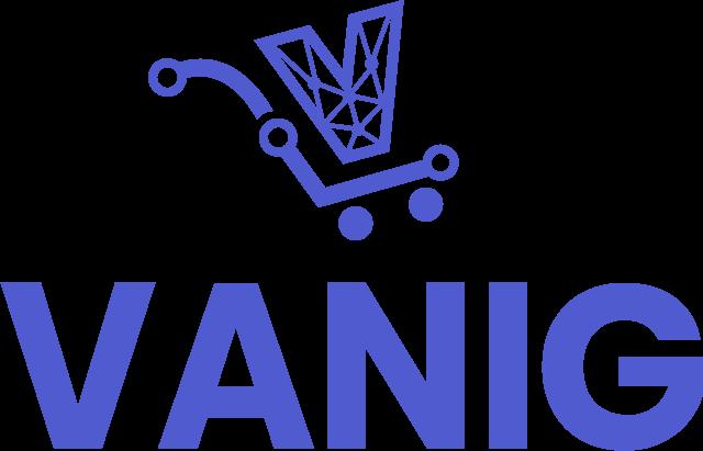 Vanig International Logo