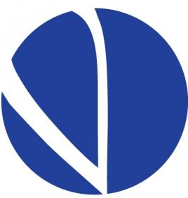 VarianceDP Logo