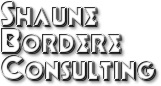 Shaune Bordere Consulting Logo