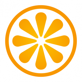 VisitBasis Tech, LLC Logo