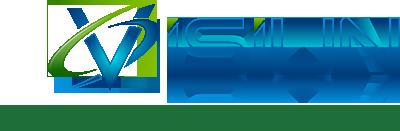 Visiun Logo