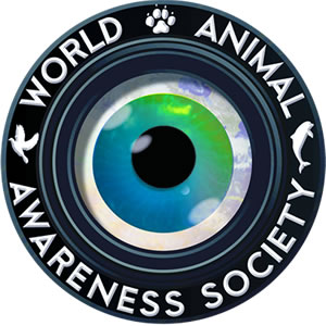 World Animal Awareness Society Logo