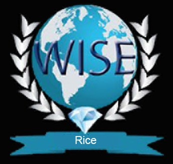 WISE Rice LLC Logo