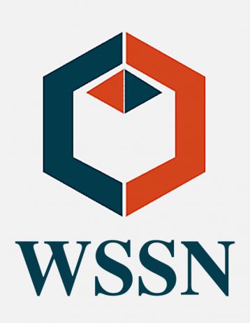 Wall Street Strategy PR Logo