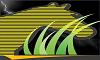 Yellow Zebra Healthy & Organic Vending Logo