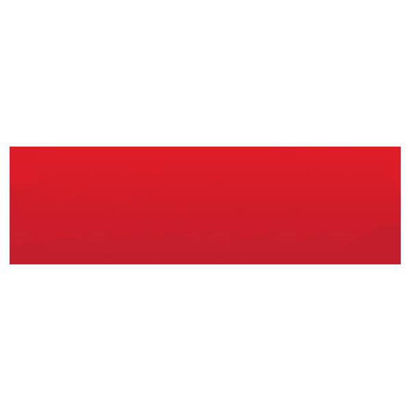 Zealot Marketing Group Logo