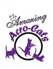 The Amazing Acro-Cats Logo