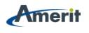 Amerit Consulting Logo