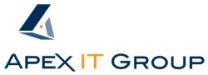 Apex IT Group, LLC Logo