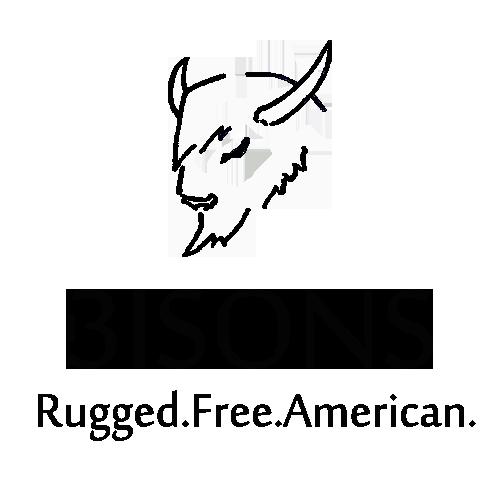 www.3bisons.com Logo